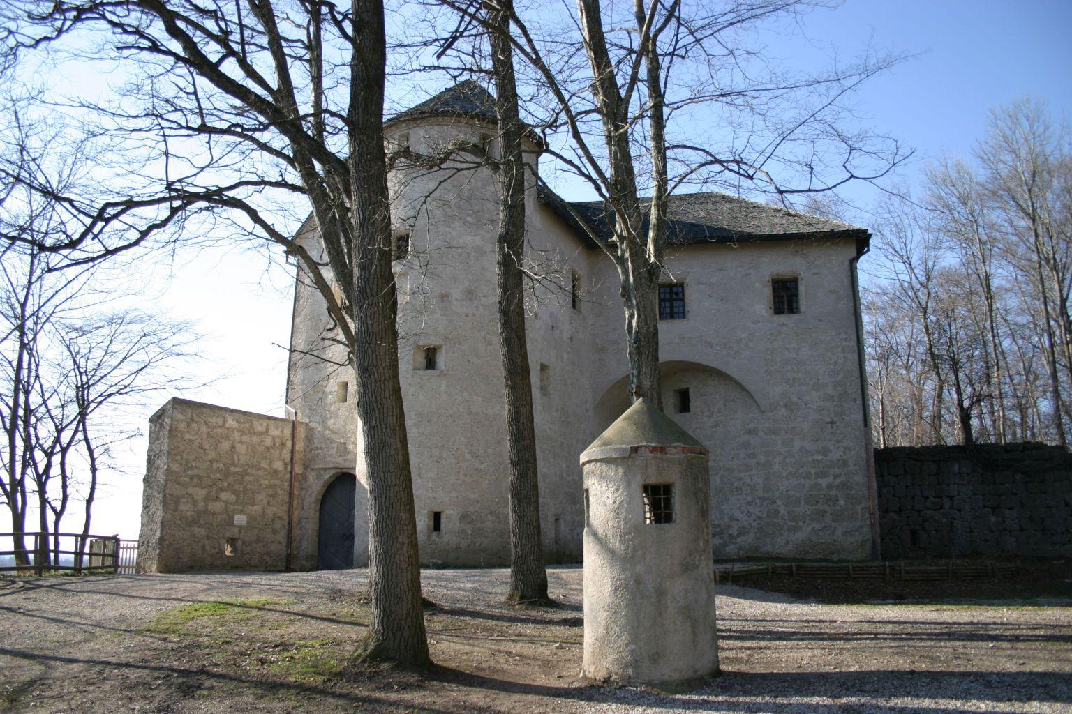 Höhlenburg Stein
